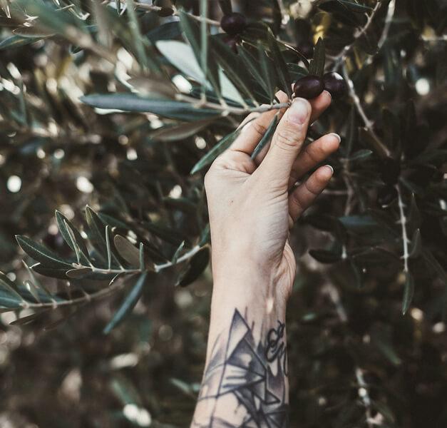 Seele & Sinne frei lassen